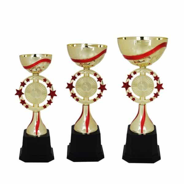 Acrylic Trophies AC4005 – Acrylic Bowl & Star Trophy