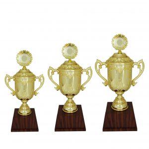 Acrylic Trophies AC4006 – Acrylic Trophy