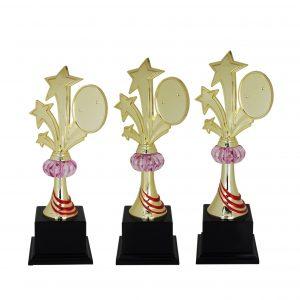 Acrylic Trophies AC4014 – Acrylic Star Trophy