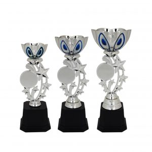 Acrylic Trophies AC4023 – Acrylic Bowl & Star Trophy