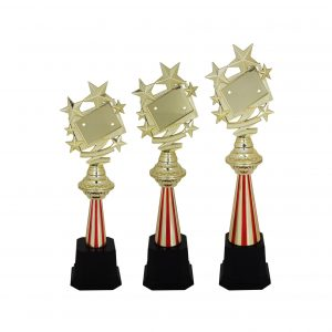 Acrylic Trophies AC4026 – Acrylic Star Trophy