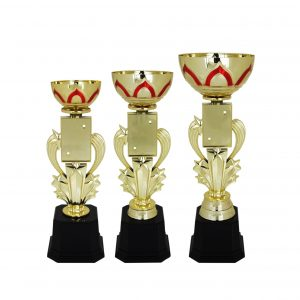Acrylic Trophies AC4033 – Acrylic Bowl & Star Trophy