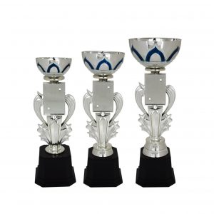 Acrylic Trophies AC4034 – Acrylic Bowl & Star Trophy