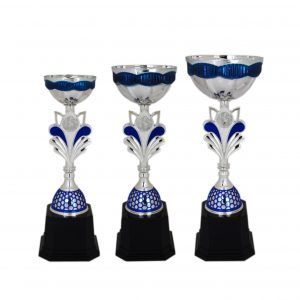 Acrylic Trophies AC4035 – Acrylic Bowl Trophy