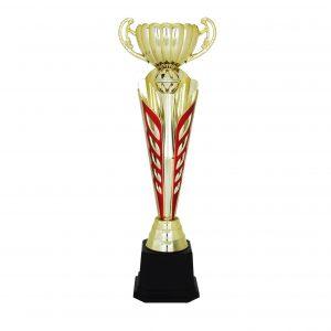 Acrylic Trophies AC4111 – Acrylic Trophy