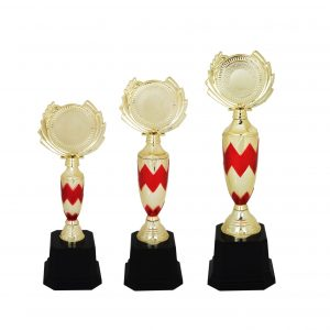 Acrylic Trophies AC4112 – Acrylic Trophy