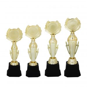 Acrylic Trophies AC4114 – Acrylic Trophy