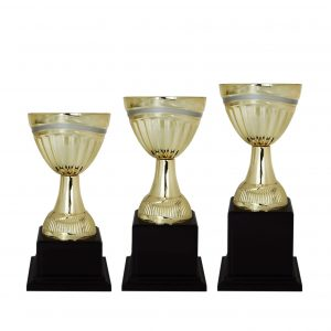 Acrylic Trophies AC4121 – Acrylic Bowl Trophy