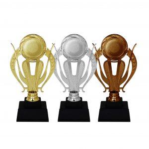 Acrylic Trophies AC4169 – Acrylic Trophy