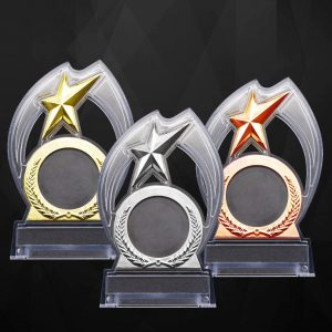 Acrylic Trophies AC4172 – Acrylic Plaque Star
