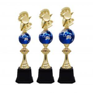 Acrylic Trophies AC4175 – Acrylic Star & Globe Trophy