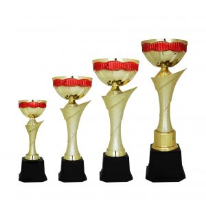 Acrylic Trophies AC4190 – Acrylic Bowl Trophy