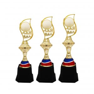 Acrylic Trophies AC4204 – Acrylic Trophy