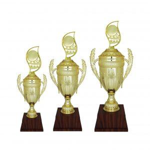 Acrylic Trophies AC4206 – Acrylic Trophy