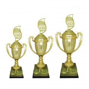 Acrylic Trophies AC4207 – Acrylic Trophy