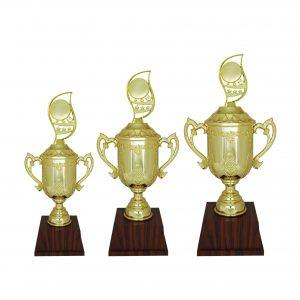 Acrylic Trophies AC4209 – Acrylic Trophy