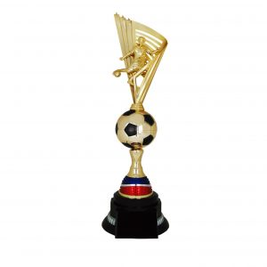 Acrylic Trophies AC4221 – Acrylic Football Trophy