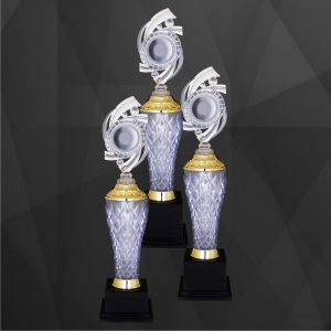 Acrylic Trophies AC4244 – Acrylic Trophy