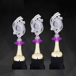 Acrylic Trophies AC4246 – Acrylic Trophy
