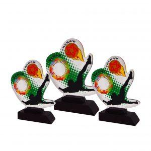 Acrylic Plaques AC4250 – Acrylic Sepak Takraw Plaque