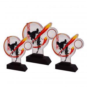 Acrylic Plaques AC4251 – Acrylic Taekwondo Plaque