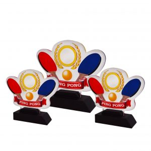 Acrylic Plaques AC4257 – Acrylic Ping Pong Plaque