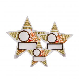 Acrylic Plaques AC4262 – Acrylic Star Plaque