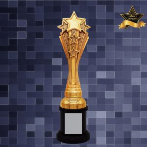 Sculpture Trophies AC4284 – Exclusive Star Sculptures Awards