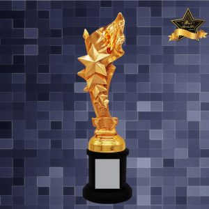 Sculpture Trophies AC4286 – Exclusive Star Sculptures Awards