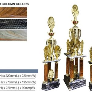 Acrylic Trophies AC4308 – Acrylic Trophy