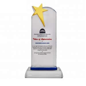 Crystal Plaques CR3084 – Exclusive Crystal Star Plaque