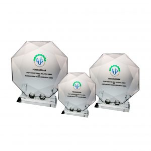 Crystal Plaques CR8025 – Exclusive Octaganol Crystal Glass Awards