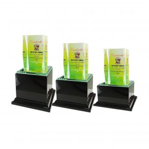 Crystal Plaques CR8043 – Exclusive Cuboid Crystal Glass Awards
