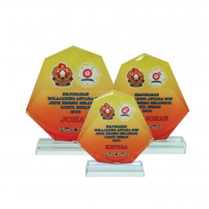 Crystal Plaques CR8095 – Exclusive Shield Crystal Glass Awards