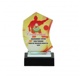 Crystal Plaques CR8096 – Exclusive Crystal Glass Awards