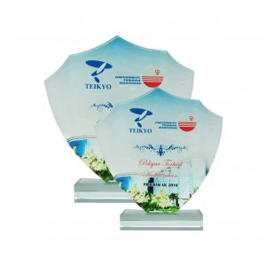Crystal Plaques CR8136 – Exclusive Shield Crystal Glass Awards