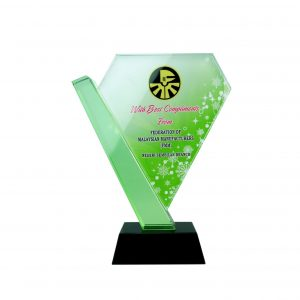 Crystal Plaques CR8167 – Exclusive Diamond Crystal Glass Awards