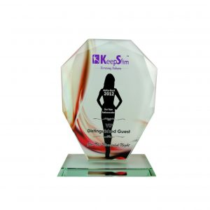 Crystal Plaques CR8170 – Exclusive Shield Crystal Glass Awards