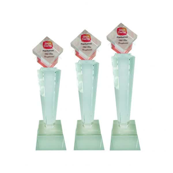 Crystal Trophies CR8188 – Exclusive Crystal Glass Awards