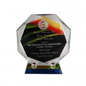 Crystal Plaques CR8204 – Exclusive Octagonal Crystal Glass Awards