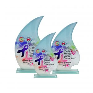 Crystal Plaques CR8224 – Exclusive Crystal Glass Awards