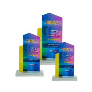 Crystal Plaques CR8251 – Exclusive Crystal Glass Awards
