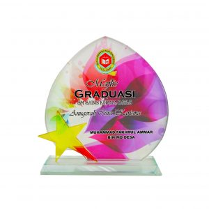 Crystal Plaques CR8255 – Exclusive Crystal Glass Star Awards