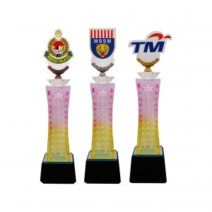 Crystal Trophies CR8294 – Exclusive Crystal Glass Awards With Acrylic