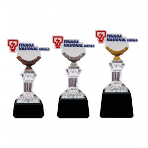 Crystal Trophies CR8296 – Exclusive Crystal Glass Awards With Acrylic Logo