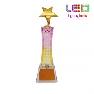 LED Trophies CR8301 – LED Lighting Trophy (Star)