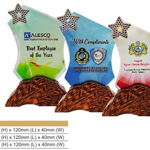 Crystal Plaques CR8314 – Color Crystal Award