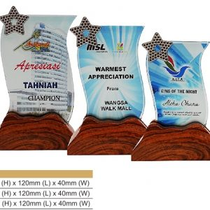 Crystal Plaques CR8316 – Color Crystal Award