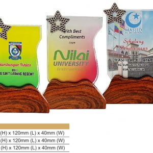 Crystal Plaques CR8319 – Color Crystal Award