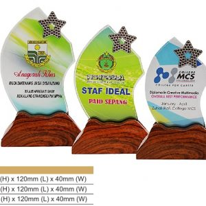 Crystal Plaques CR8320 – Color Crystal Award